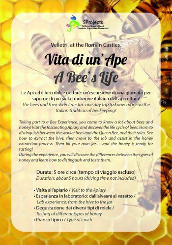 Vita di un'ape